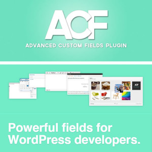 plugin wordpress advanced custom fields